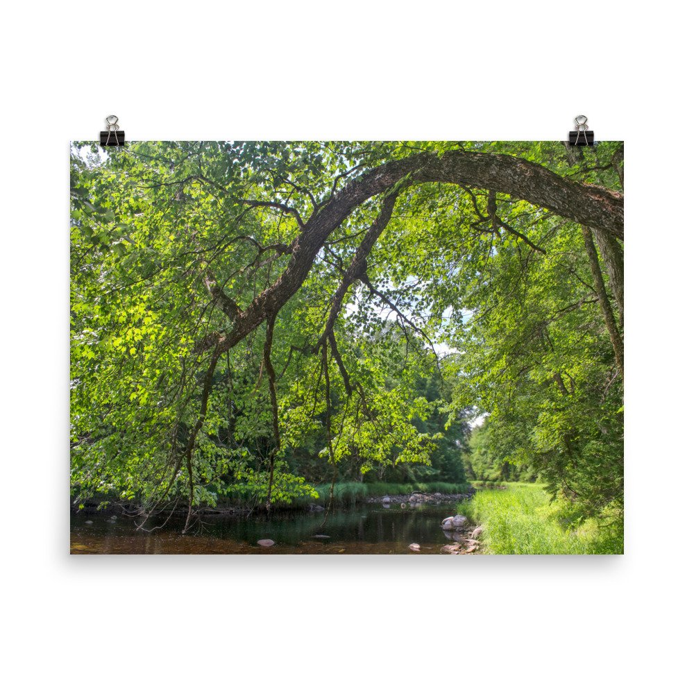 mersey river kejimkujik national park photo print
