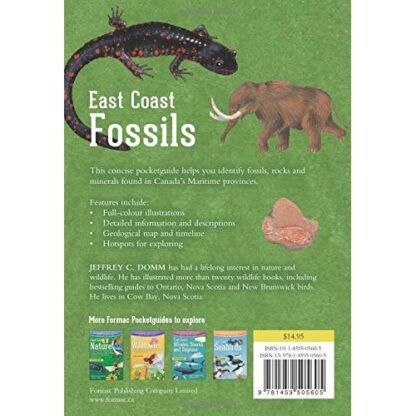 East Coast Fossils: A visual guide to fossils, rocks and minerals in the Maritime Provinces