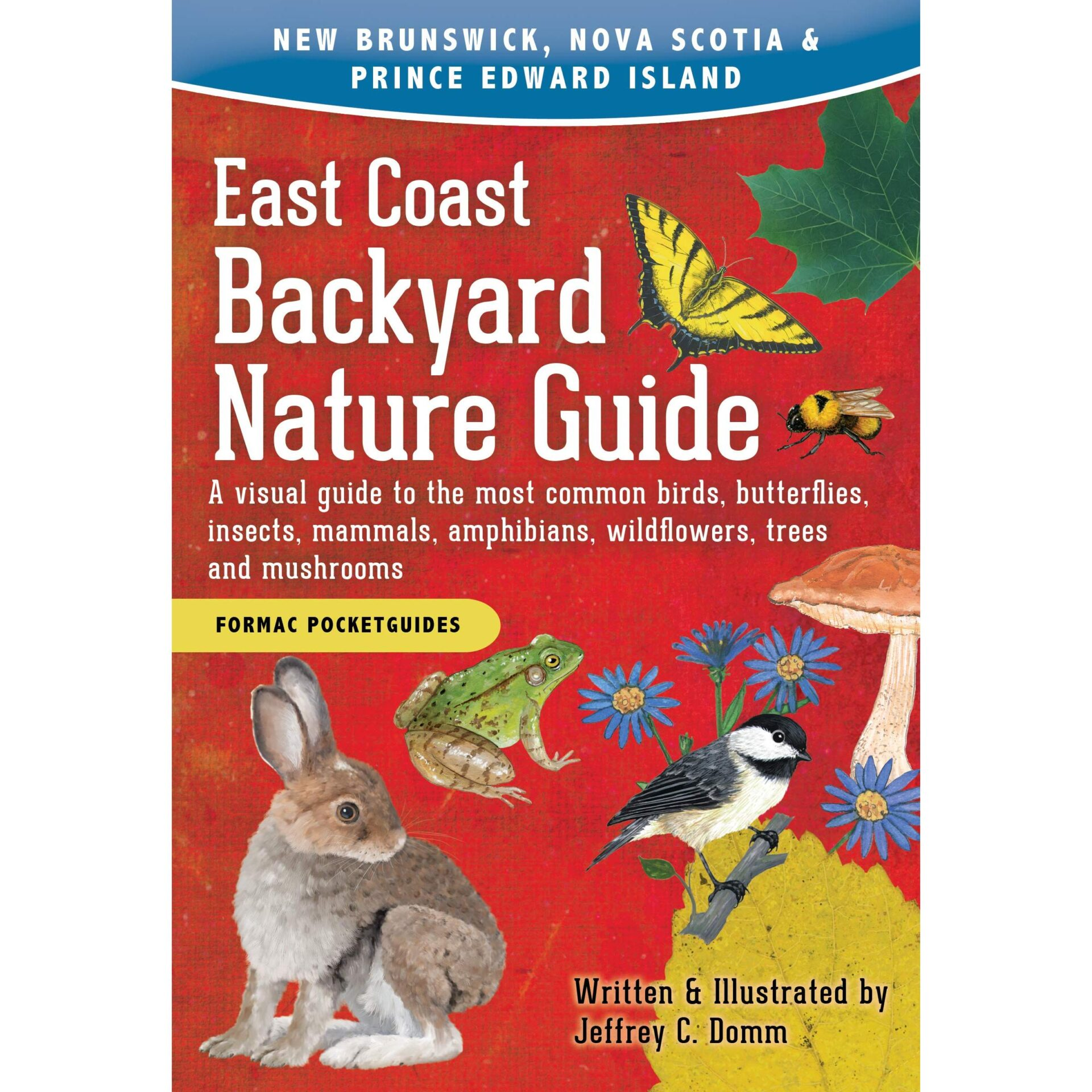 East Coast Backyard Nature Guide: A visual guide to the most common birds, butterflies, insects, mammals, amphibians, wildflowers, trees and mushrooms